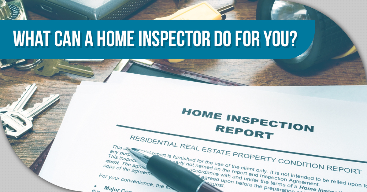 Home Inspectors Denver The Different Types Of Mold