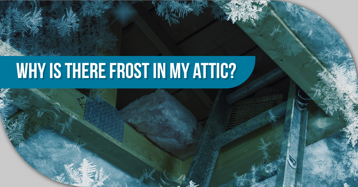 Why Is There Frost In My Attic?