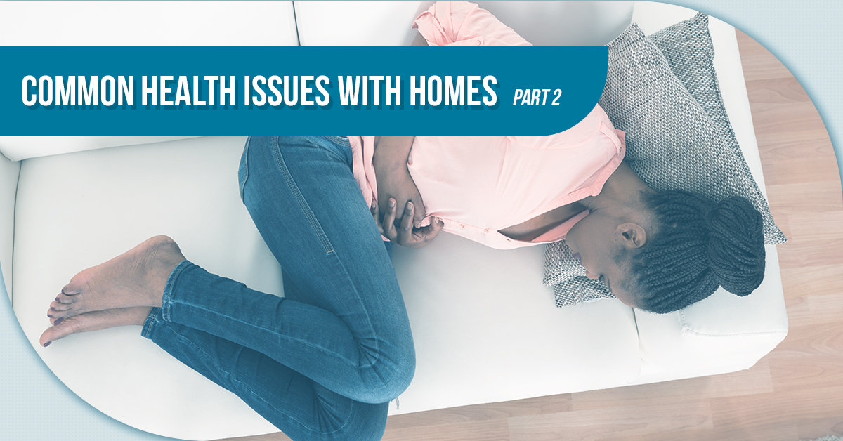 Common Health Issues With Homes – Part 2
